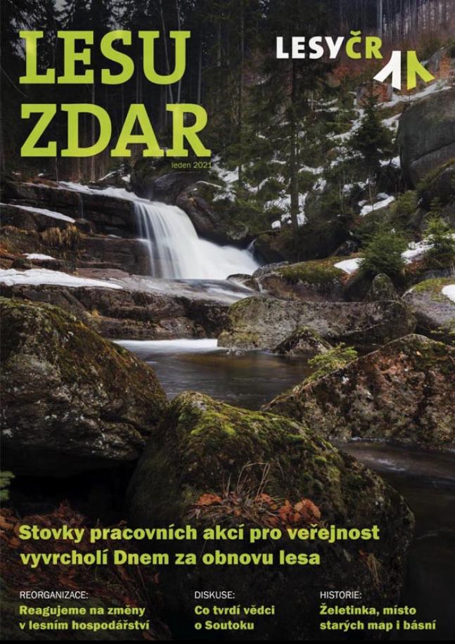 Lesu zdar 4/2020